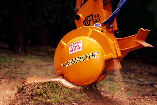 Qualified Tree Removal Felling And Tree Dismantling Derbyshire